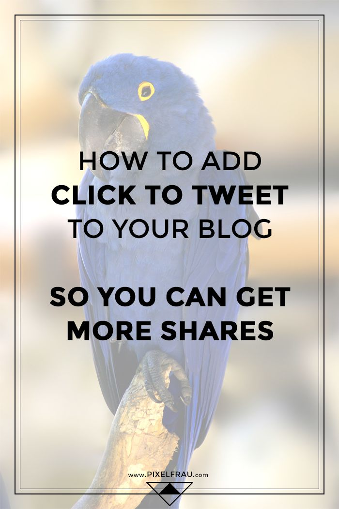 How to Add 'Click to Tweet' Boxes to WordPress
