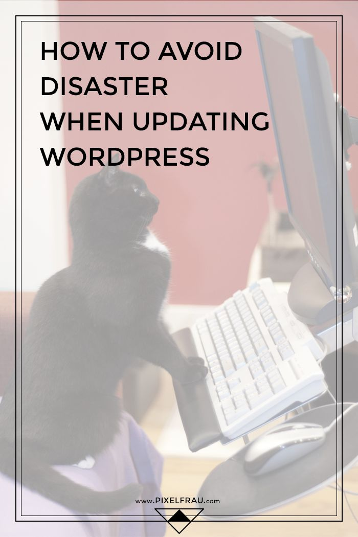 How to Avoid Disaster When Updating WordPress